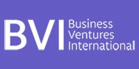 Business Ventures International